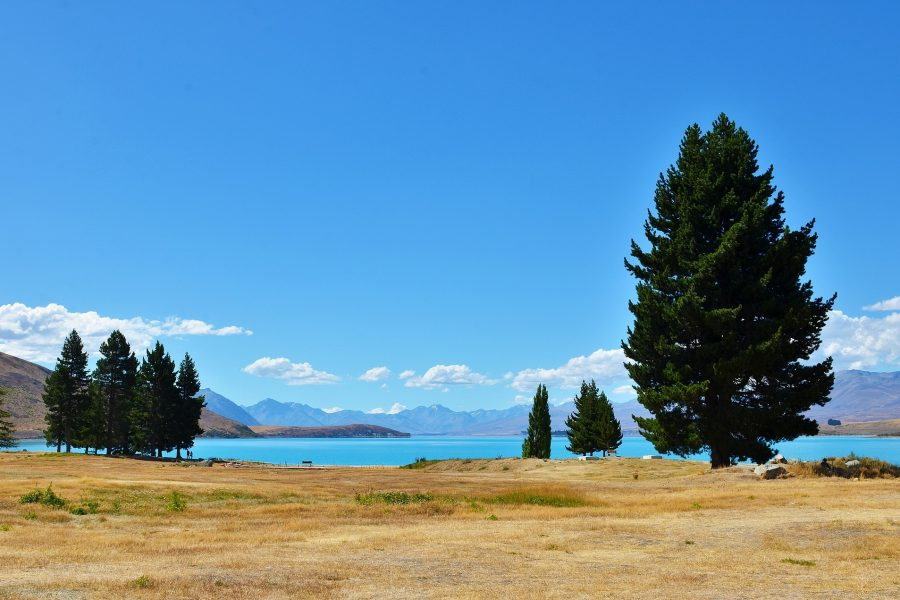 Best Lakefront Properties
