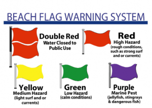 Beach Safety Rules